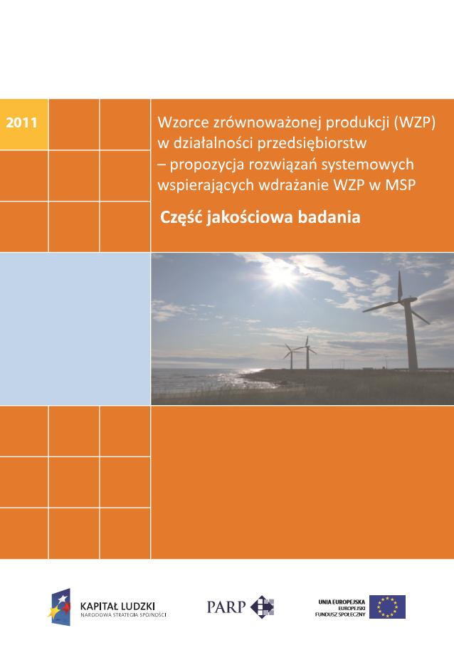 Wzorce zrównoważonej produkcji w działalności przedsiębiorstw – badanie jakościowe