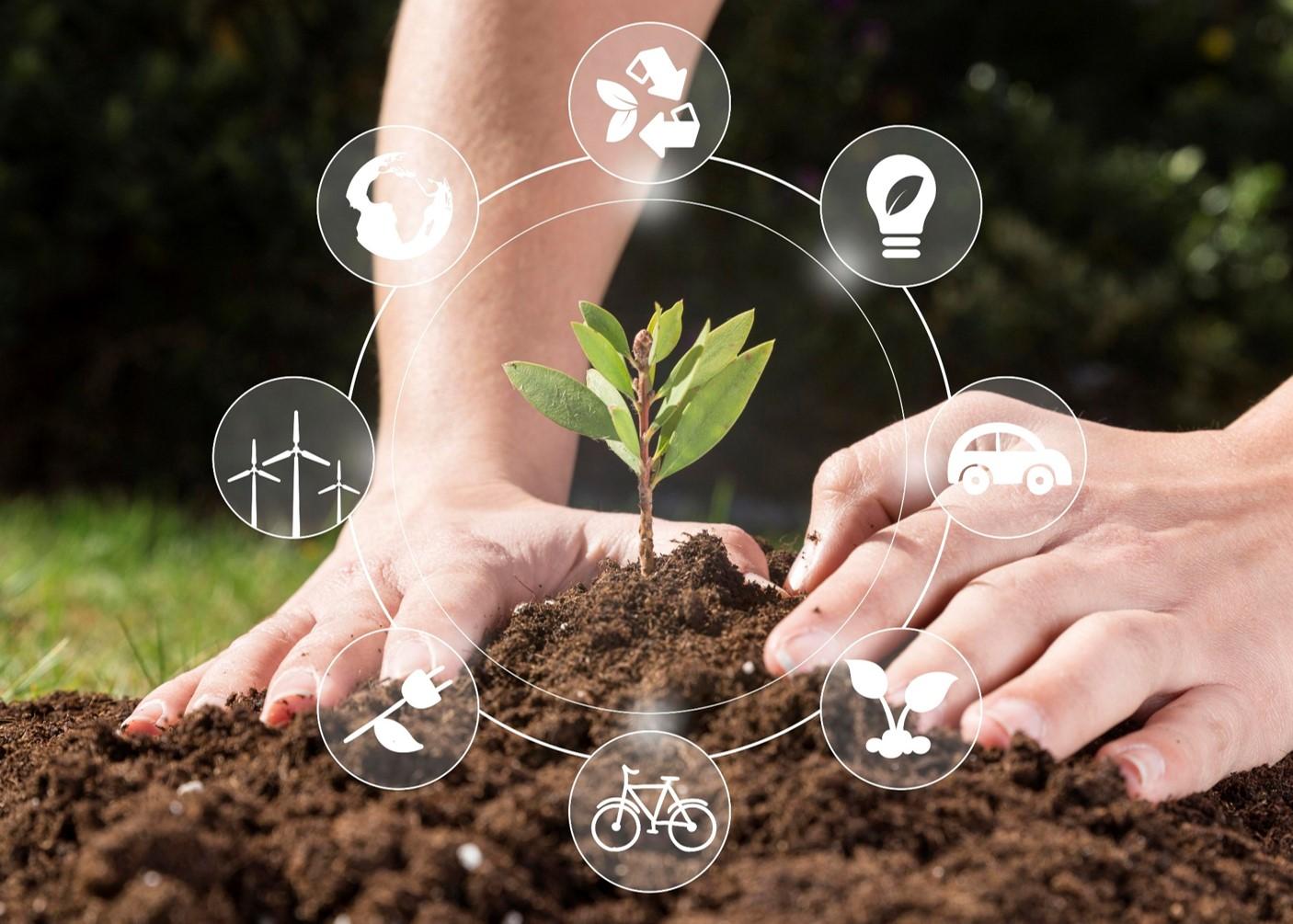 Ponad 250 mln zł na rozwój zielonych innowacji w polskich firmach. Celem m.in. redukcja emisji dwutlenku węgla i ilości odpadów